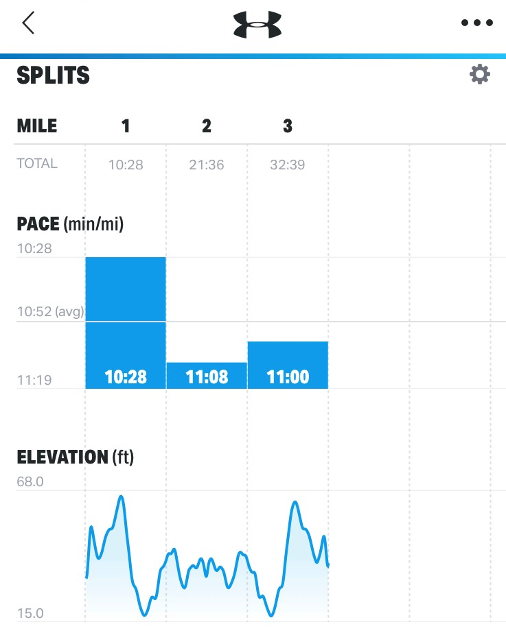 running splits and elevation data from Day 1